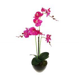 Композиция в горшке 55 см орхидея гигант