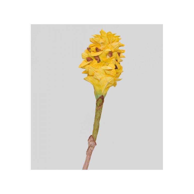 TR 566M Цветок имбиря