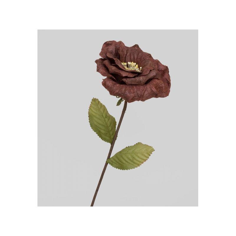 TRN 245 Роза