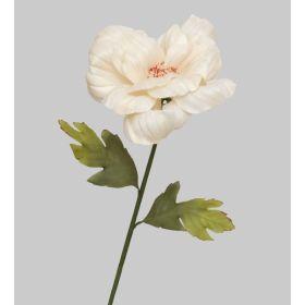 TR 412 Роза