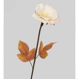 TR 409 Роза
