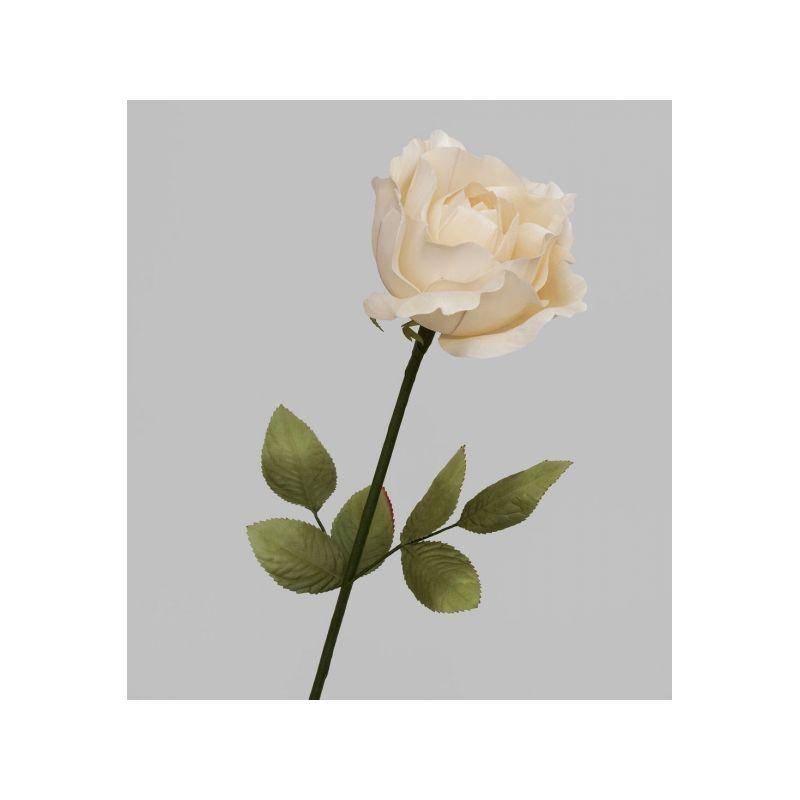TR 402 Роза