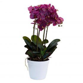 """Цветок в горшке """"Орхидея темно-розовая"""""""